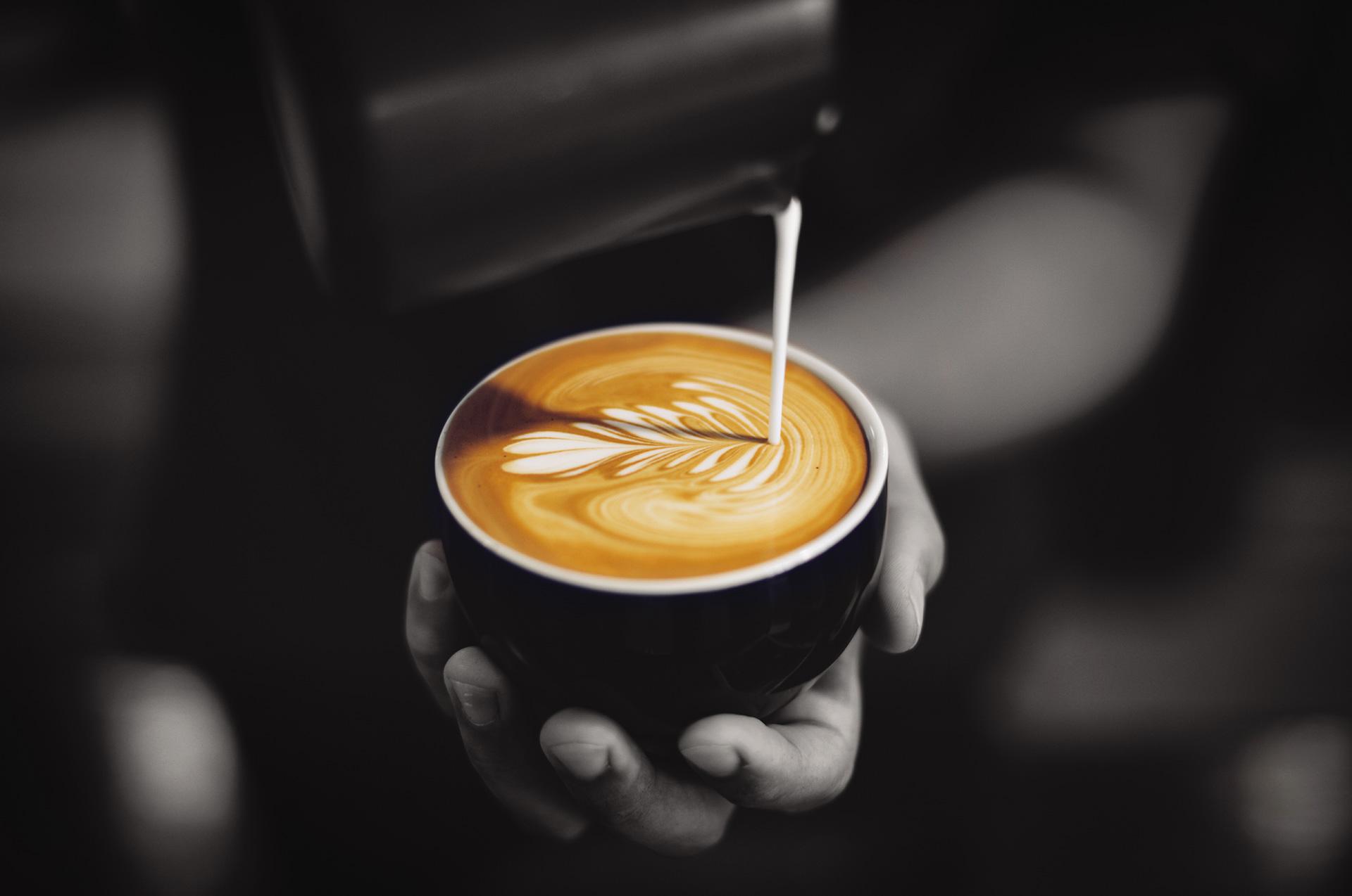 Divino Coffee